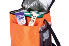 12-Can-Cooler-with-2-Exterior-Pockets